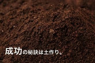 ブルーベリー栽培の土作り